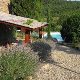 Borghetto Calcinaia: Lavender alongside the veranda