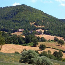 Casa Annabella: Fantastic place for those who like to walk and enjoy the nature in Tuscany