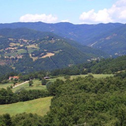 Casa Annabella: A view across the fields in the countryside of Pieve Santo Stefano, Tuscany