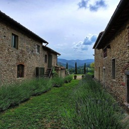 Casa del Rosmarino: House of rosemary, and lavender, luscious scents of Tuscany