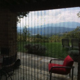 Apartment Giovanna: A view outside of the open Tuscan countryside