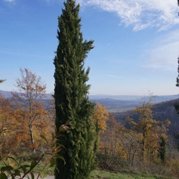 La Casina: A view of the valley looking south towards Umbria