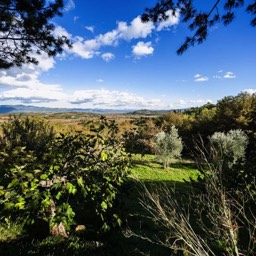 Palazzolo Farmhouse: One of fabulous views from the rental property
