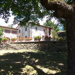 Villa Sergia: The terraced gardens around the self catering house, Sansepolcro, Tuscany