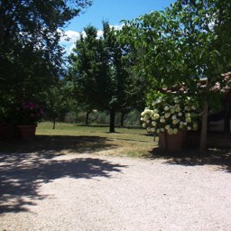 Villa Sergia: Carefully maintained gardens to relax within